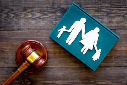 """The Parent's """"Humble"""" Pursuit of Custody and Parenting Time: Basics for Legal Professionals"""