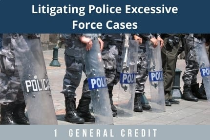 Litigating Police Excessive Force Cases CLE