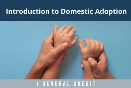 Introduction To Domestic Adoption CLE