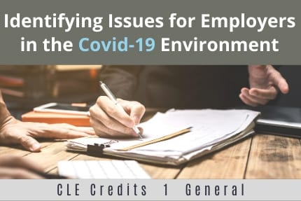 Identifying Issues For Employers in the Covid19 Environment CLE