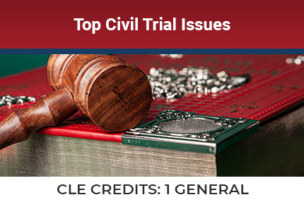 Top Civil Trial Issues CLE